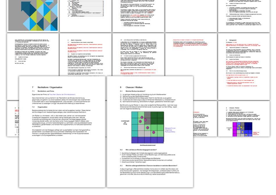 Nett Weingut Business Plan Vorlage Ideen - Dokumentationsvorlage ...