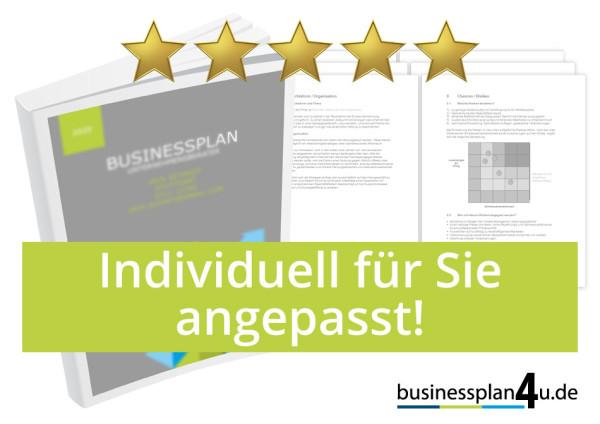 businessplan-selber-individuell-angepasst